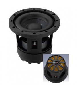RAPTOR-6 Subwoofer compact 100 Watts  4 ohms